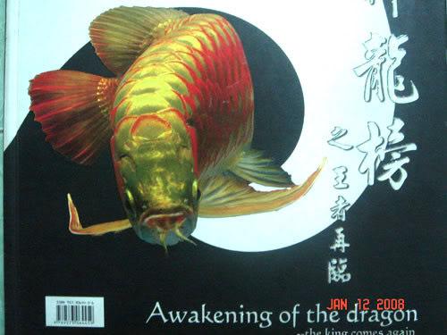 Awakening_of_the_Dragon.jpg