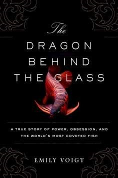 The Dragon Behind the Glass.jpg